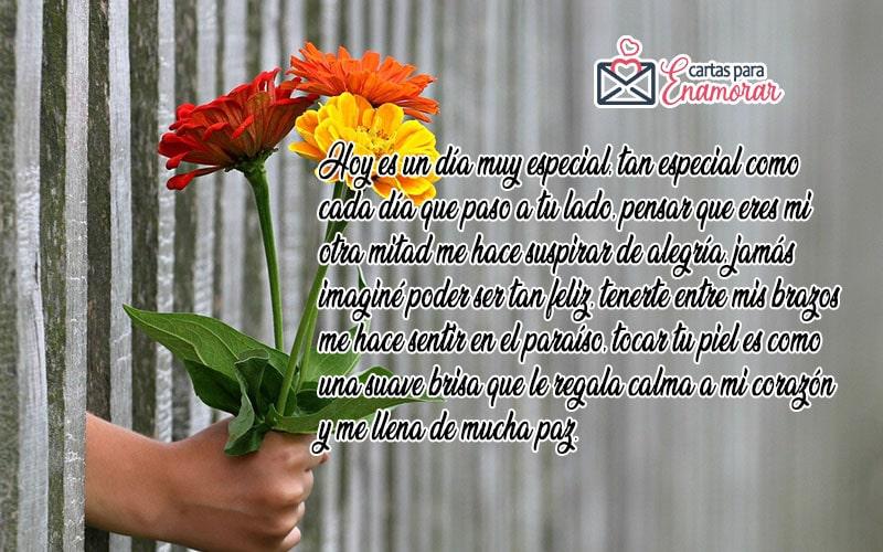 cartas de amor puro